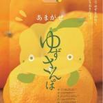yuzusanpo2014_p